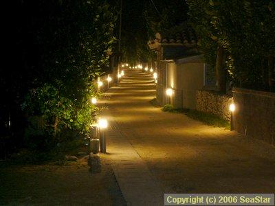 ライトアップされた村道1号線