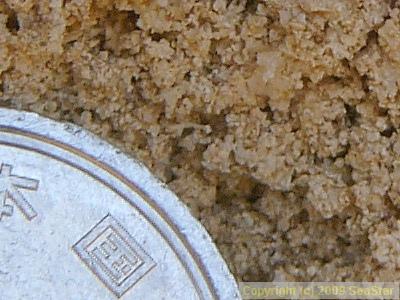 マチナト石灰岩の拡大