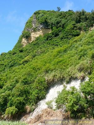 平安座島の露頭